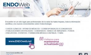 ENDOweb